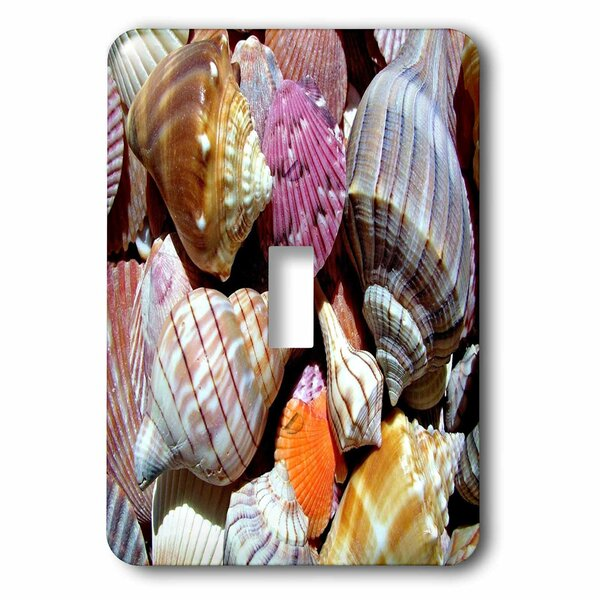 Florida Seashells 1-Gang Toggle Light Switch Wall Plate by 3dRose