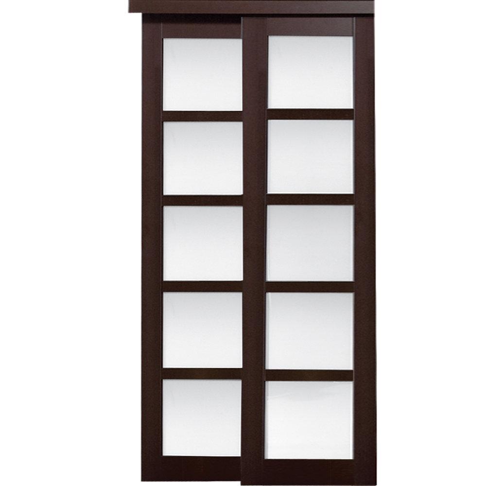 baldarassario 2 panel painted sliding interior door - Erias Home Designs