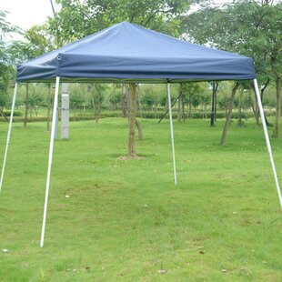 Slant Leg 9 Ft. W x 9 Ft. D Steel Pop-Up Canopy by Outsunny