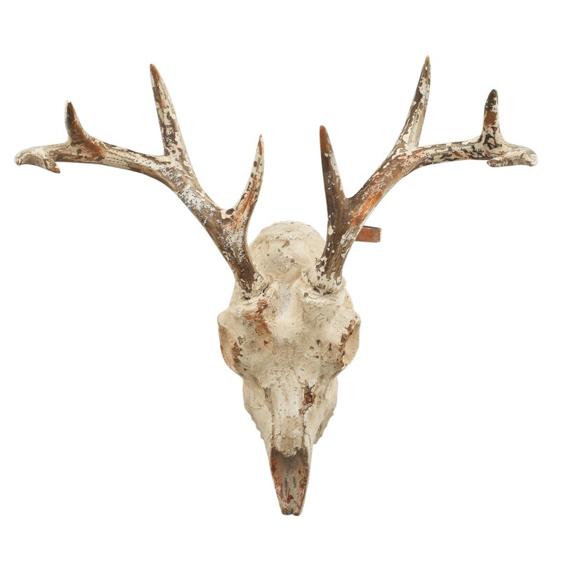 Deer Wall Decor loon peak cervides deer skull wall décor & reviews | wayfair