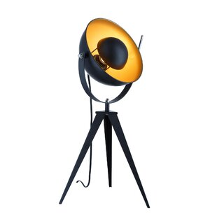 Online Reviews Danae Studio 25 Tripod Table Lamp By Williston Forge