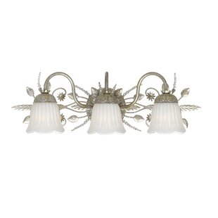 Astoria Grand Shadwell 3-Light Vanity Light