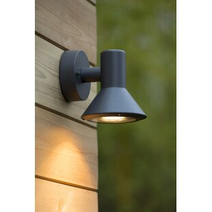 Nando 1-Light Outdoor Spotlight By Lucide