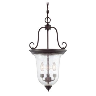 Darby Home Co Cowger Lanterns 3-Lights Foyer Pendant