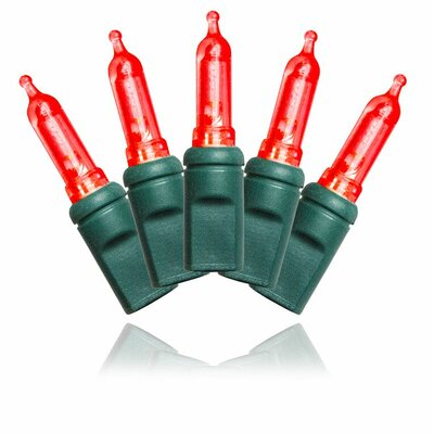 """Queens of Christmas Green Wire 4"""" Spacing Lights Colour: Red"""