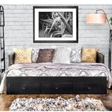 Carmelita Full Daybed by August Grove®