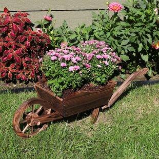 Wheelbarrow Planters Youu0027ll Love In 2019 | Wayfair