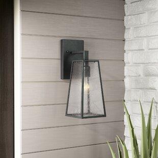 Trent Austin Design Karly 1-Light Outdoor Wall lantern