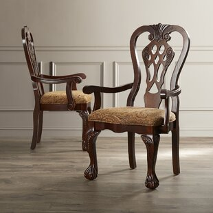 Christon Traditional Arm Chair (Set of 2) Astoria Grand