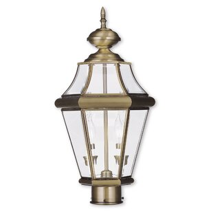 Violetta Outdoor 2-Light Lantern Head by Darby Home Co