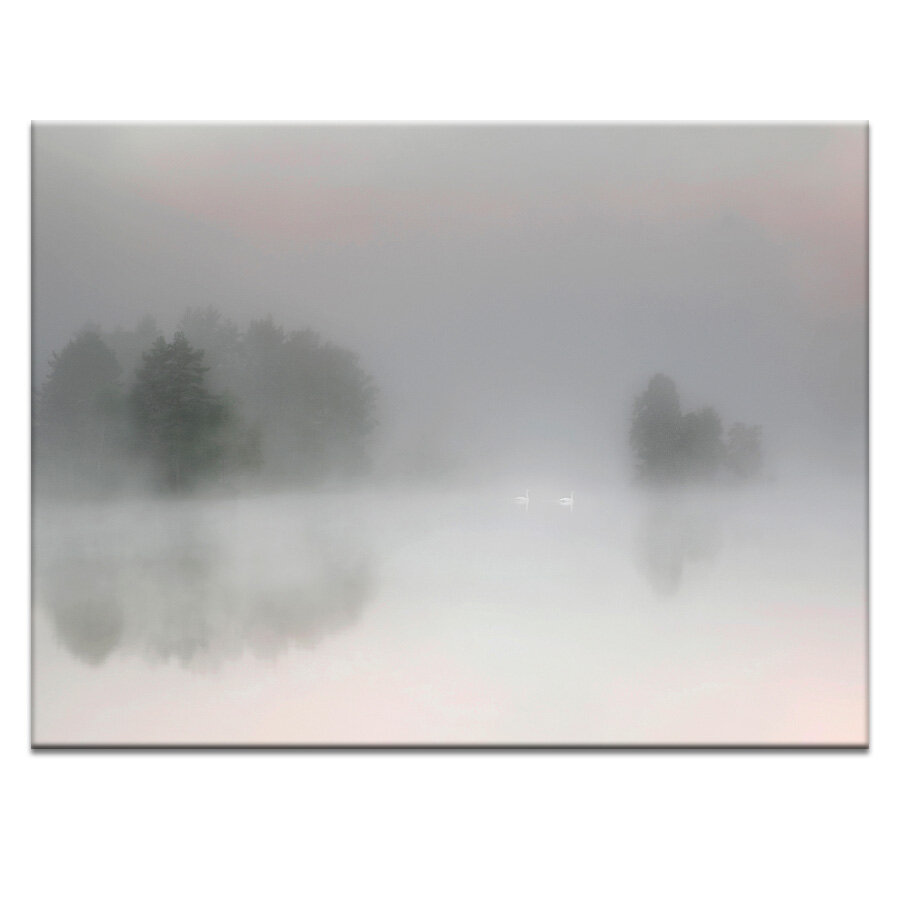 Latitude Run Misty Morning Photographic Print On Wrapped Canvas Wayfair