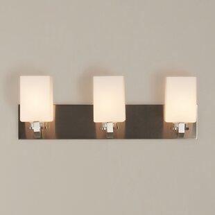 Brayden Studio Soho 3-Light Vanity Light