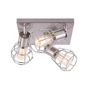 Mcquaid 3-Light Directional & Spotlight