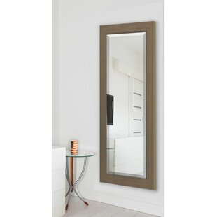 Darby Home Co Champagne Colville Wall Mirror