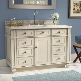 Lambrecht 48 Single Bathroom Vanity by Alcott Hill