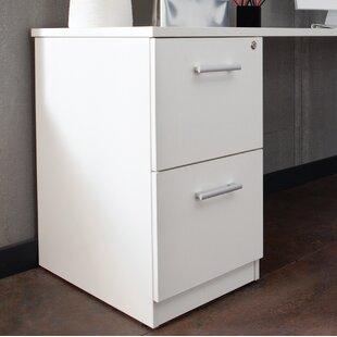 Ebern Designs Gerth Locking Pedestal 2-Drawer Vertical Filing Cabinet