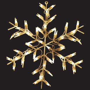 The Holiday Aisle Snowflake 50 Light String Light