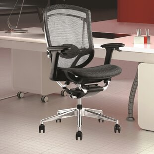 Ergo Ergonomic Mesh Task Chair