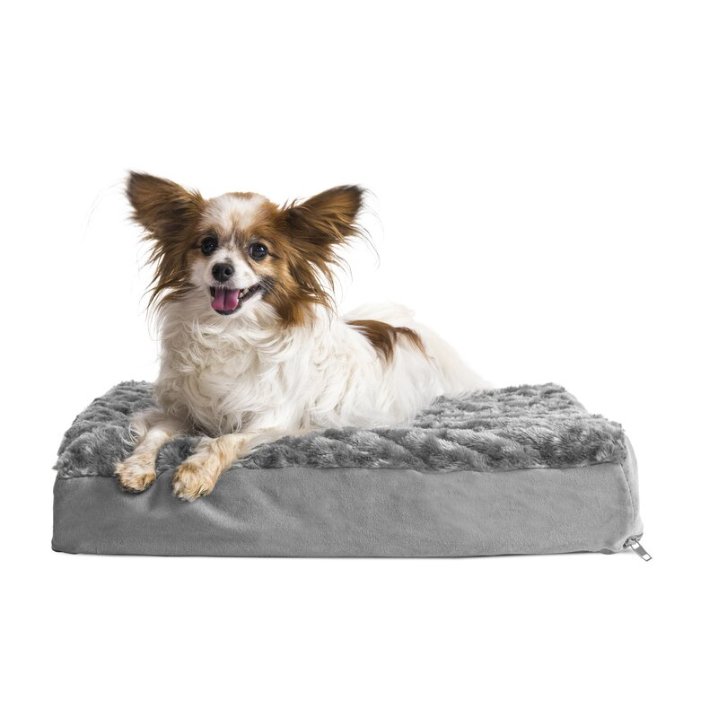Archie & Oscar Ernie Ultra Plush Deluxe Ortho Pet Bed