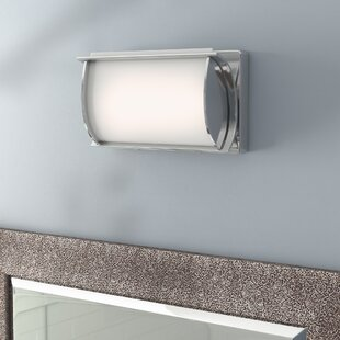 Orren Ellis Camillea 1-Light LED Bath Bar
