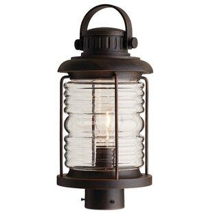 Shop for Aryan 1-Light Lantern Head By Breakwater Bay