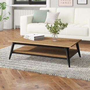 Coffee Table With Storage By Williston Forge