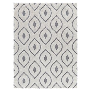 Great choice Darwin Platinum Shag White Area Rug ByCorrigan Studio