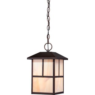 Loon Peak Raci 1-Light Outdoor Hanging Lantern