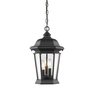 Look for Bibb 3-Light Outdoor Hanging Lantern By Fleur De Lis Living