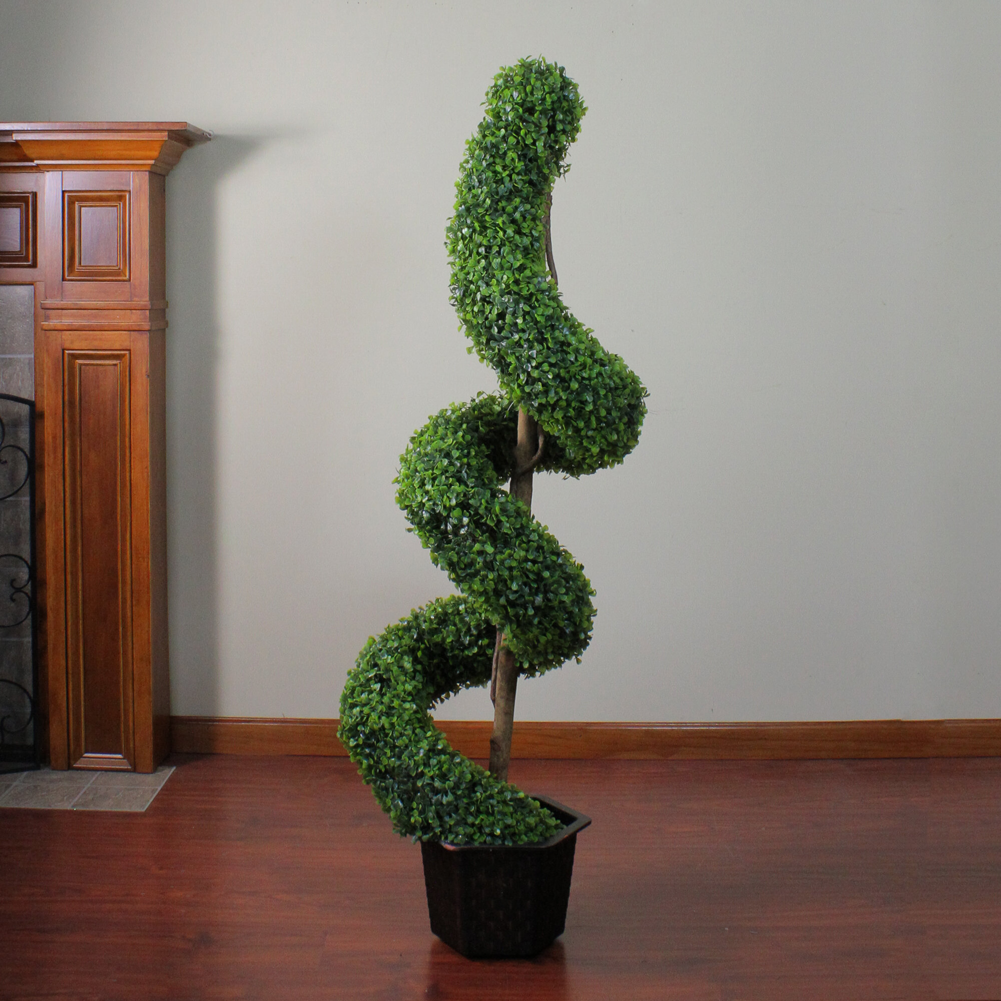 Northlight Two Tone Artificial Boxwood Spiral Topiary Tree In Pot Wayfair