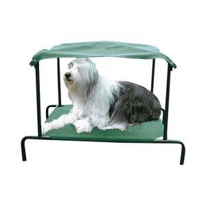 Elevated Breezy Bedu2122 Outdoor Dog