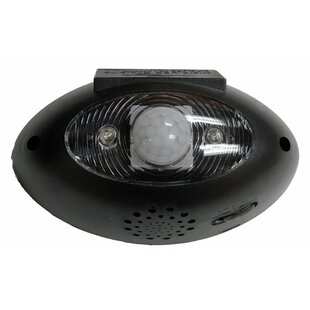 Homebrite Solar Eyewatch LED, Battery Operated Outdoor Security Flood Light with Motion Sensor