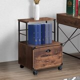 Orman 1-Drawer Vertical Filing Cabinet by Williston Forge