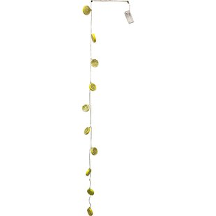 Comparison Keanu Lemon Slices 10 Light Novelty String Lights By The Holiday Aisle