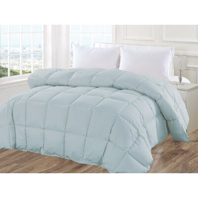 Size:Full//Queen Gray NEW JLA Home Egyptian Cotton Blanket