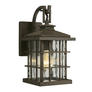 Reviews Townsend 1-Light Outdoor Wall Lantern By Design House