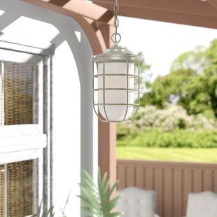 Breakwater Bay Woolverton 1-Light Outdoor Hanging Lantern