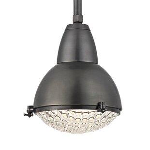 Ezequiel 1-Light Cone Pendant by Brayden Studio