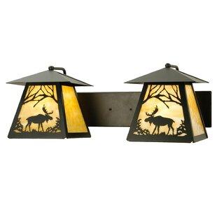 2-Light Outdoor Wall Lantern by Meyda Tif..