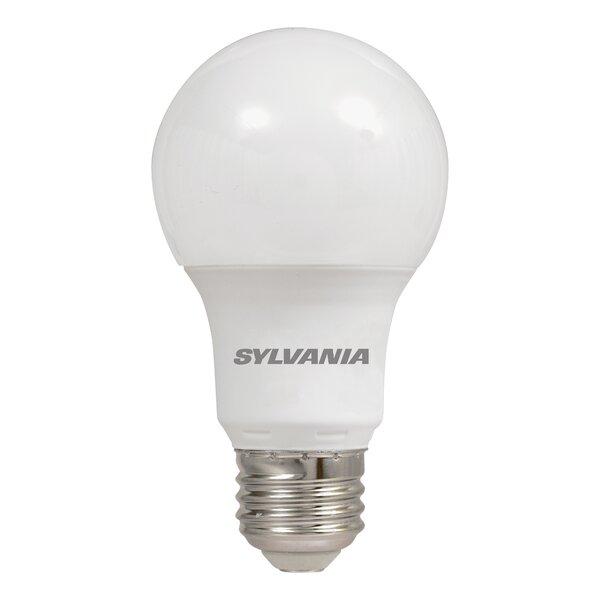 Do it Best Global Sourcing 9W G25 Cfl Globe Bulb