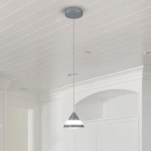 Orren Ellis Northington 1-Light LED Cone ..