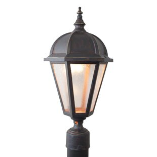 Charlton Home Flannigan Lantern Head
