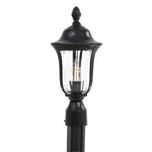 Morgan Park Outdoor 1-Light Lantern Head