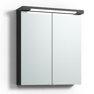 Kenneth 60 X 70cm Surface Mount Flat Mirror Cabinet With Lighting By Ebern Designs