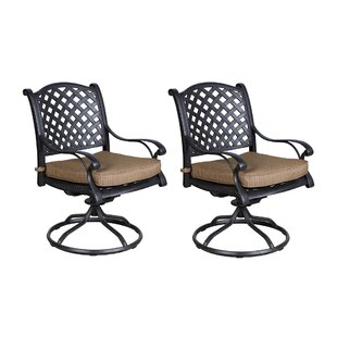 Palmview Patio Chair with Cushion (Set of 2)