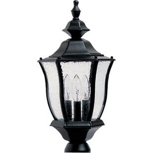 Online Reviews Forontenac Outdoor Post Lantern By Darby Home Co