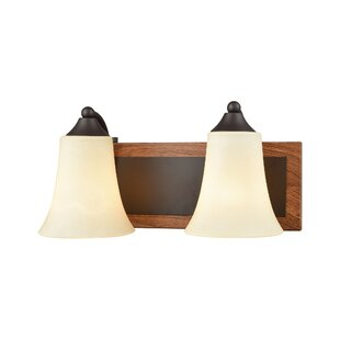 Millwood Pines Sapphire 2-Light Vanity Light
