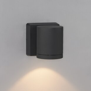 Bruck Lighting Cylinder 1-Light Outdoor Sconce