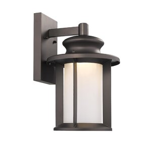Dunneback Transitional Outdoor Wall Lantern
