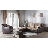 Vespi 2 Piece Sleeper Living Room Set by Orren Ellis